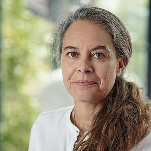 Anne Højer Simonsen, Vicedirektør, Dansk Industri