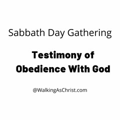 Testimony Of Obedience With God