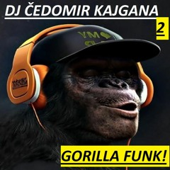 GORILLA FUNK!
