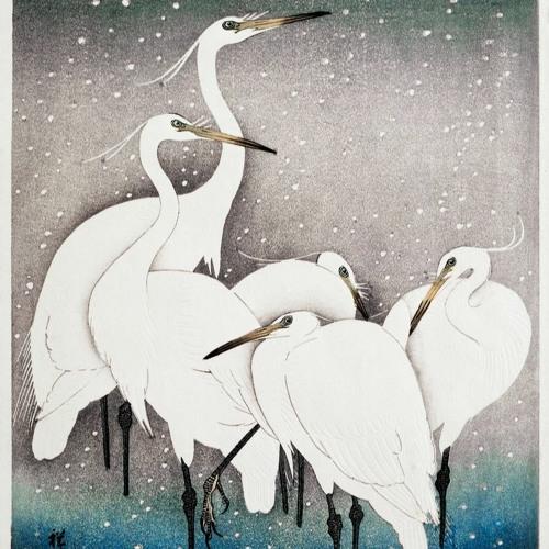 """[合唱] 3.11 鳥よ 永遠にその美しい羽根を広げよ / Chorus """"Bird, fly forever with your beautiful wings"""" for 3.11"""