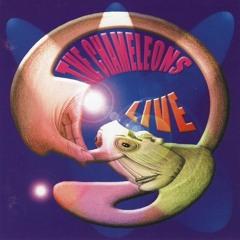 The chameleons - Perfume Garden (live)