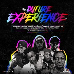 THE DUTURE EXPERIENCE VOL.1