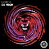 NOTOK - So High
