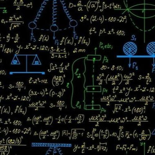 AFSNIT 2: I DEN SORTE BOKS: Når algoritmen diskriminerer