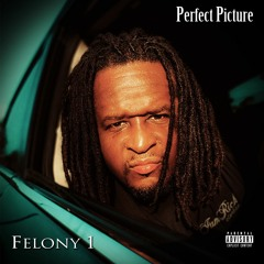 """Felony 1 - """"Perfect Picture"""""""