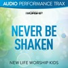 Never Be Shaken (Original Key with Background Vocals) [feat. Jared Anderson]