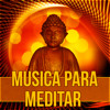 Musica para Relajar la Mente