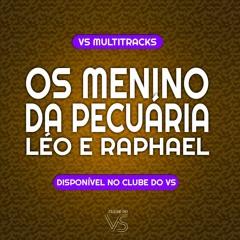 Os Menino Da Pecuária - Léo e Raphael - VS Sertanejo