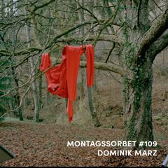 #109: Dominik Marz - Montagssorbet mit Laut & Luise