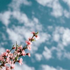 Lukem, Nahucast - Another Better Wind