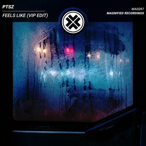 PTSZ - Feels Like (VIP Edit)