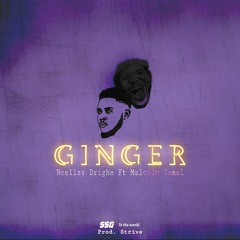 Ginger Feat. Malcolm Jamal