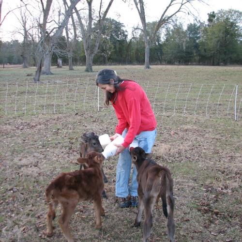 The Lonely Ruralist: Audio-Essay