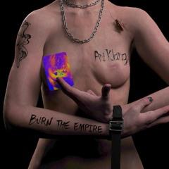 ANI KLANG - BURN THE EMPIRE (DANIEL RUANE RELAPSE)