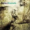 Download Fat Jon - Magic Flute (Fattermanner Remix) Mp3