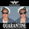 Download Quarantine (How Many Times Can I Watch The Tiger King?) Mp3