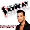 Marry Me (The Voice Performance)