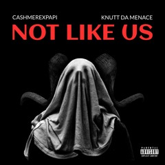 Not Like Us - Cashmerexpapi X Knuttdamenace