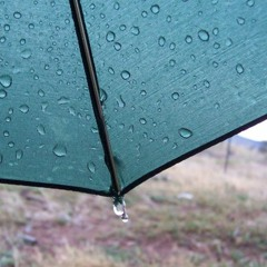 ASMR Thunderstorm + Rain Sounds Inside Tent (6:30am) - D100