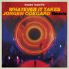 Whatever It Takes Jorgen Odegard Remix Mp3