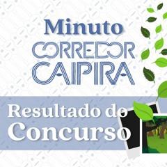 As fotos vencedoras do Concurso Fotográfico   Minuto Corredor Caipira