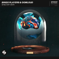 Bingo Players & Oomloud - Shed My Skin