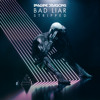 Bad Liar – Stripped Mp3