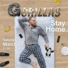 Download Podcast Gorillas Live Stay Home Mp3