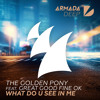The Golden Pony feat. Great Good Fine Ok - What Do U See In Me