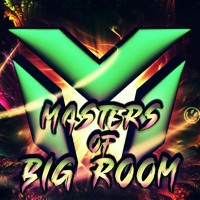 MASTERS OF BIG ROOM 2021 Mix #9