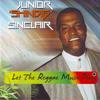 Let The Reggae Music Play (Instrumental)