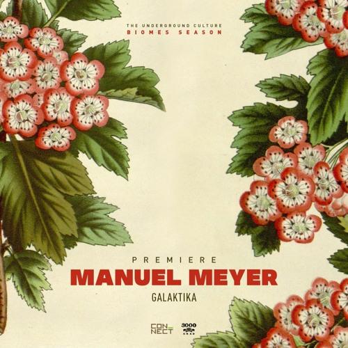 PREMIERE: Manuel Meyer - Galaktika (Original Mix) [3000GRAD]