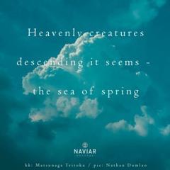 OneAmbient4 - Heavenly Creatures (Naviarhaiku 371)