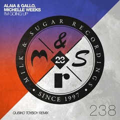 Alaia & Gallo, Michelle Weeks - I'm Going Up (Qubiko Remix)