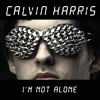 I'm Not Alone (Herve's See You at the Festival Remix)