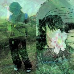 cherry blossom 벚꽃 🌸🌸 cj808 + ssh1be