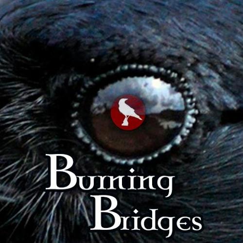Sin of a Crow - Burning Bridges