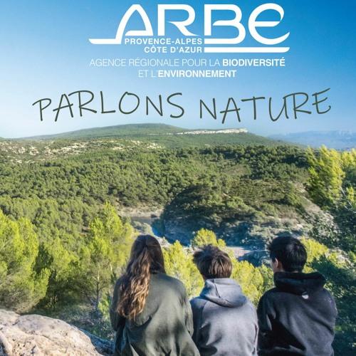 Mireille BENEDETTI, Présidente de l'ARBE vous présente le Livre Blanc pour une relance durable