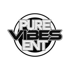 Pure Vibes Ent - Ultimate Rnb Experience