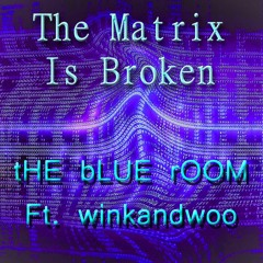 The Matrix Is Broken - tHE bLUE rOOM Ft. winkandwoo