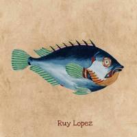 Skizzo Franick - Ruy Lopez
