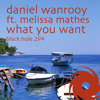 What You Want (Kris O'Neil Remix) [feat. Melissa Mathes]