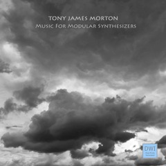 Tony James Morton - Snippets of Music For Modular Synthesizers (DWI 28)