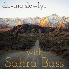 driving slowly.. with Sahra Bass