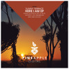 Sunny Terrace - Here I Am (Intrinity Remix)