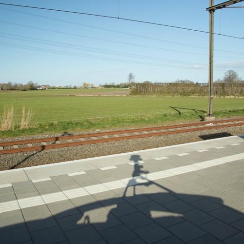RUISxRIZOOM S1E2: Willem de Haan