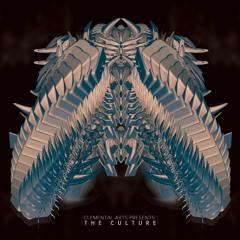 Ego Death Presents: The Culture Vol.8