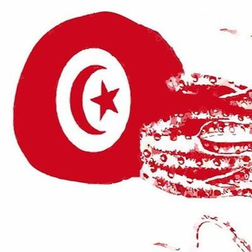 Túnez: el largo camino de la transición