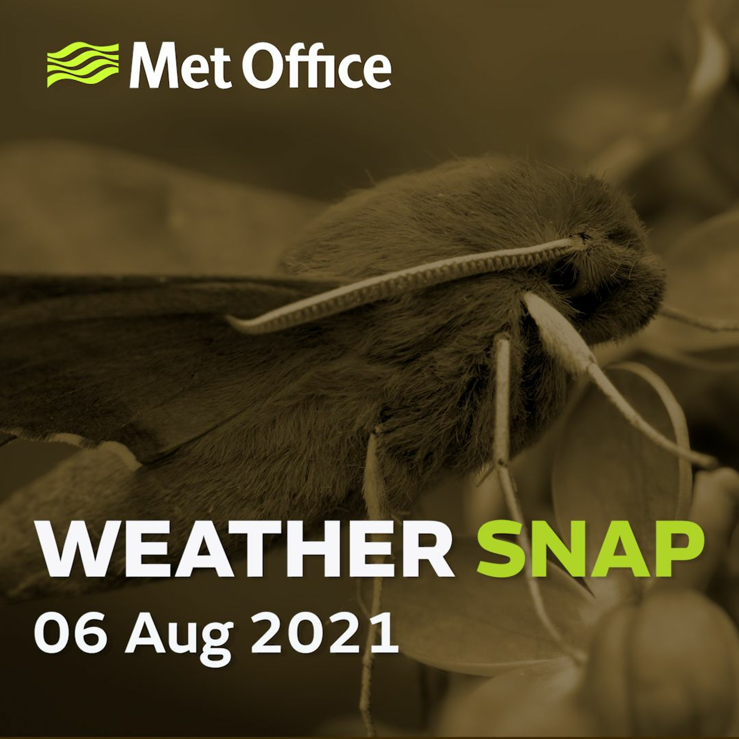 Weather Snap 06 Aug 2021