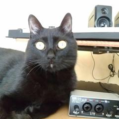 黒猫トーイ ~BLACKCAT TORY~(Original Mix)